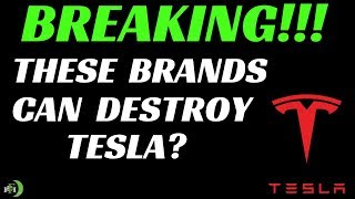 THESE BRANDS CAN DESTROY TESLA???? | (OUCH!!!!)