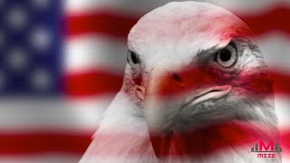 How did the bald eagle become America's national bird?