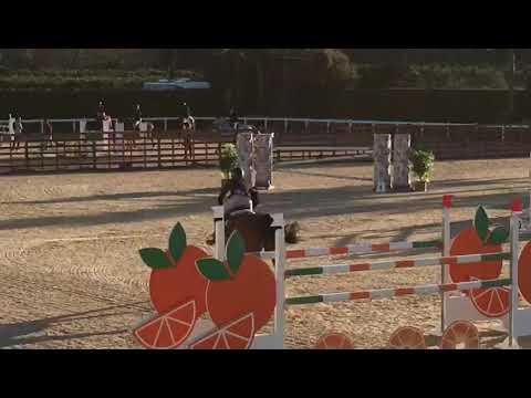 Isolde 3rd place CSI Valencia 2020