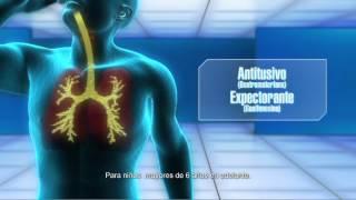 Rompe Pecho DM | Cough Suppressant & Expectorant