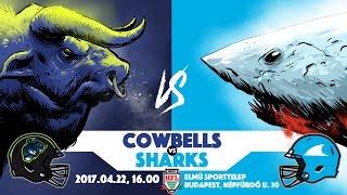 Budapest Cowbells – Győr Sharks 2017.04.22.