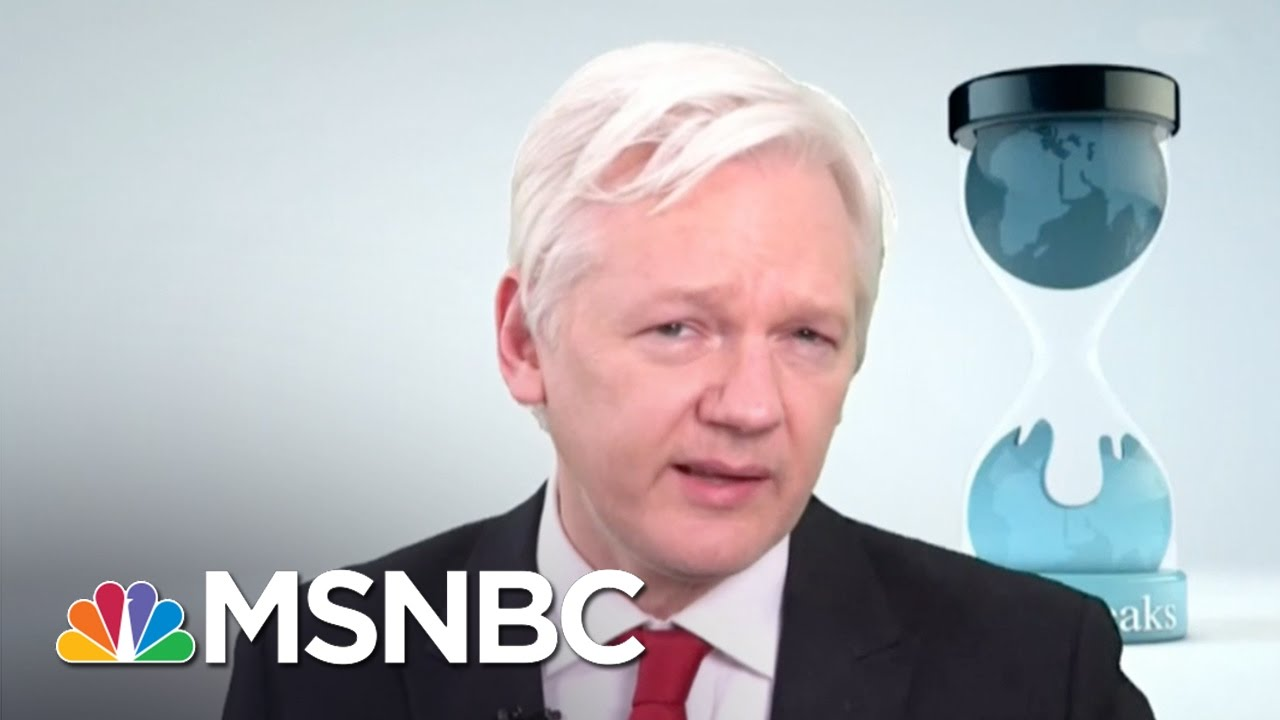 Julian Assange: CIA 'Lost Control Of Its Cyber Weapons Arsenal' | MSNBC thumbnail