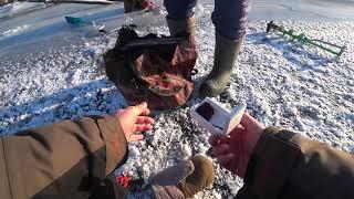 Рыбалка на волге тетюши зима 2020-2020