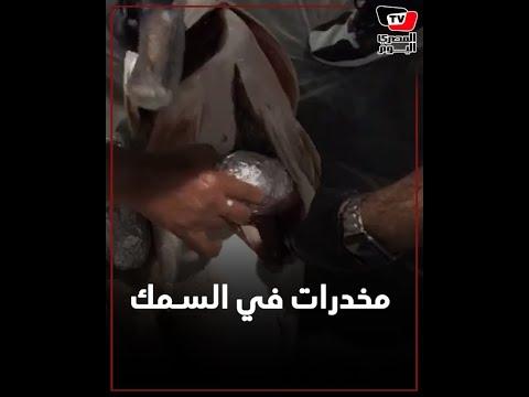 ضبط 16.5 كيلو من المخدرات في الكويت أخفيت في سمك «هامور» إيراني