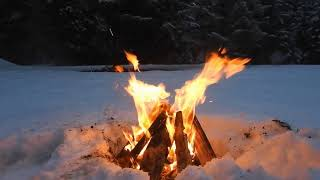 8 Hrs Relaxing Crackling Campfire, Forest Snow To Help You Sleep