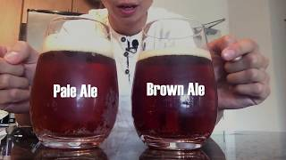 Pale Ale Vs Brown Ale - Granville Islands English Bay Pale Ale And Big Rocks Traditional Ale