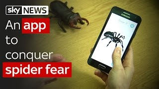 Swipe | VR in court & the app to conquer spider fear