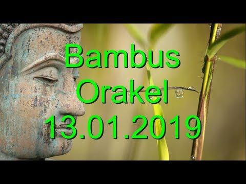 Bambus Orakel: 13.01.2019 (Sonntag) (видео)