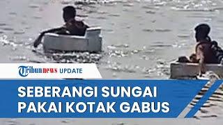 Viral Video Bocah di OKI Seberangi Sungai Naik Gabus Saat Berangkat Sekolah, Ini Penjelasannya