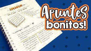 Apuntes Bonitos!!  ✄ Barbs Arenas Art!
