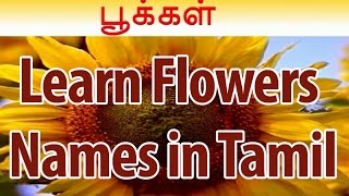 Learn Names of Flowers in Tamil | Flower Names in Animation Video | Learning for Kids