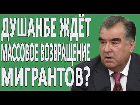 ПАТЕНТ для мигрантов таджиков в России 2020: лайфхаки жизни
