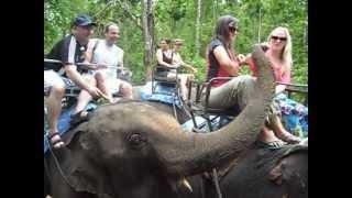 preview picture of video 'Chiang Mai - Safari en Elefantes  por la selva tailandesa 2012'