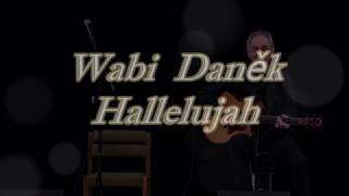Wabi Daněk- Hallelujah