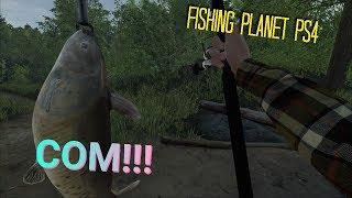 Река мадвотер миссури в fishing planet где ловить сома