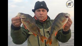 Про рыбалка на озере ильмень форум
