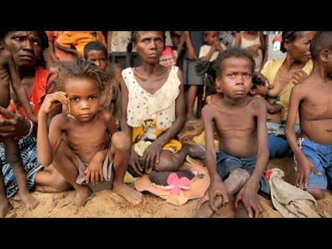 UN calls for help in Madagascar hunger crisis remain unanswered | DW News