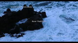 東尋坊の動画素材, 4K写真素材