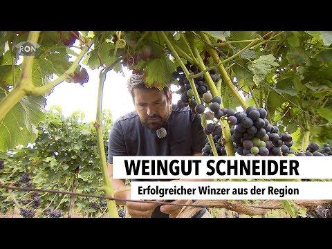 Weingut Schneider | RON TV