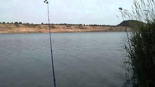 Рыбалка в чеховском районе манушкино