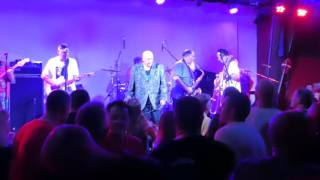 Wooly Bully Live - Bad Manners Adelaide 03/11/16
