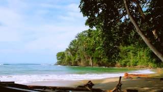 Phlake - Costa rica