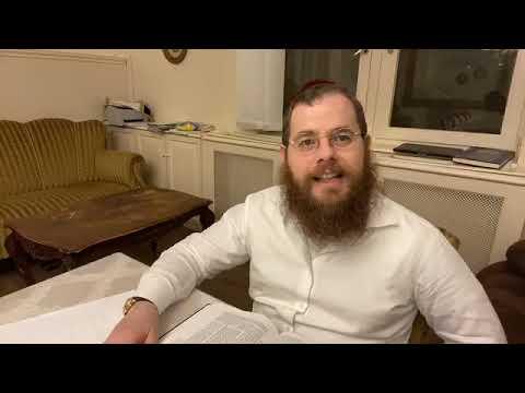 Sábát 51 – Napi Talmud 114 – Háziállatok vezetőszára szombaton #hocaa #háziállatok
