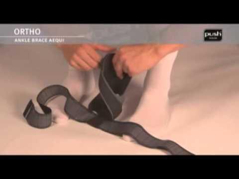 I muscoli che flettono la parte inferiore della gamba al ginocchio