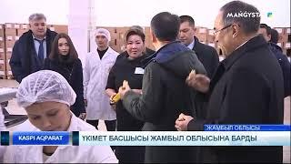 Үкімет басшысы Жамбыл облысына барды