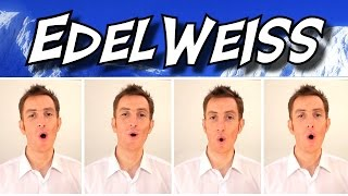 Edelweiss (The Sound Of Music) - A Cappella Barbershop Quartet - Julien Neel