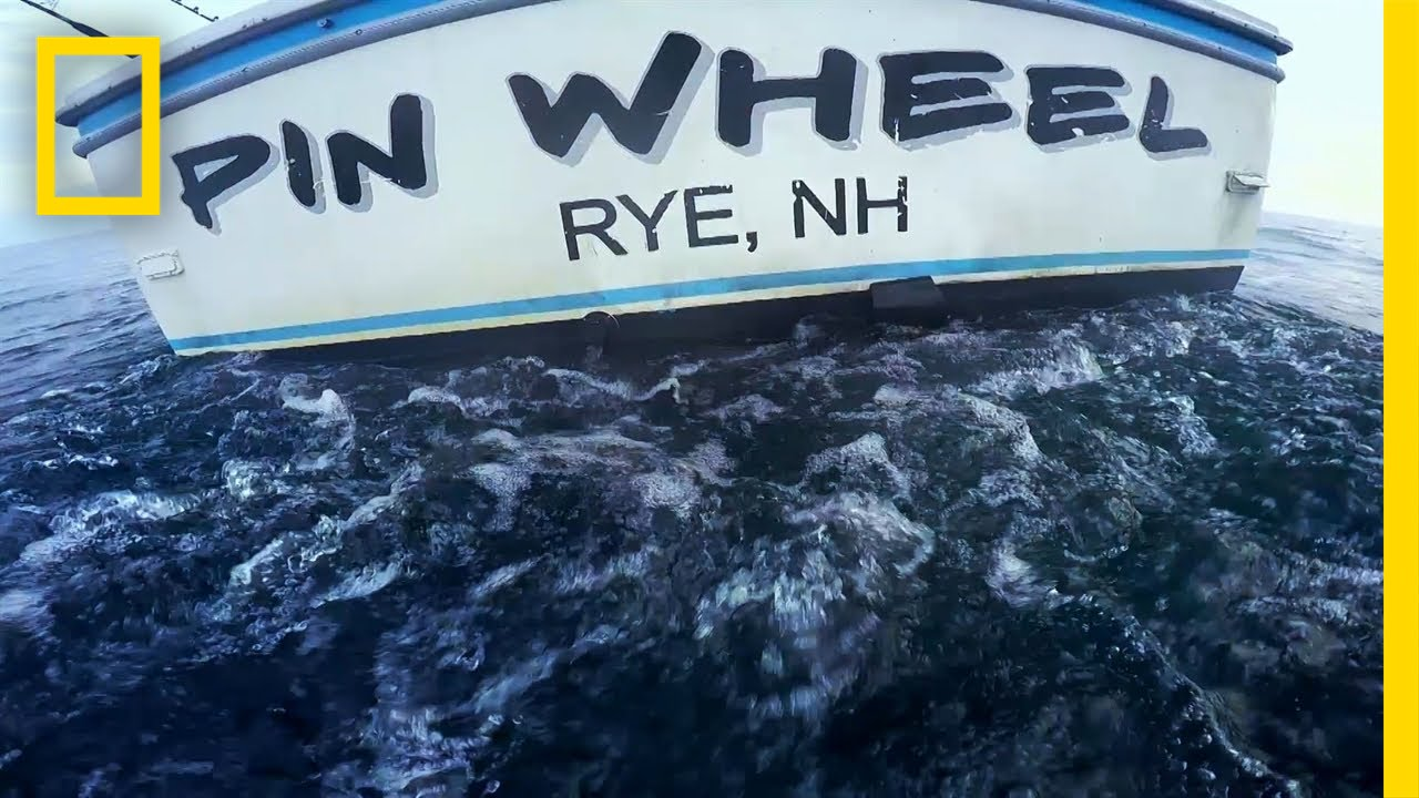 Tuna Tragedy | Wicked Tuna: Outer Banks thumbnail
