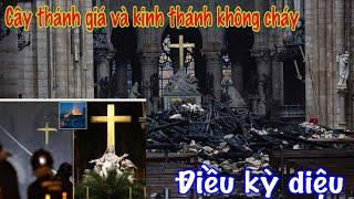 cháy nhà thờ Paris cây thánh giá vẫn nguyên vẹn và câu chuyện lạ thường