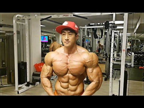 Où se trouvent et comme sappellent les muscles chez la personne