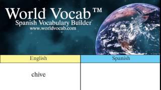 Free Spanish Quick Vocab™ :Chive - el cebollino