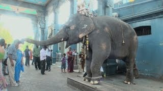 Manakula Vinayagar Temple, Pondicherry
