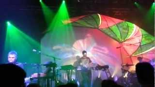 Animal Collective - Applesauce (Live at Stockholm 2012)