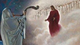 Der Sinn des Lebens ➤ Die Engel auf Erden   Gott macht Sinn