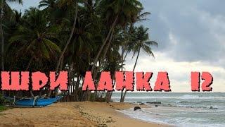 Шри-Ланка 12: Рынок, пикник на берегу