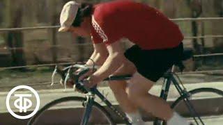 Велоспорт в СССР. Велосипедисты А.Пиккуус, А.Гусятников, С.Морозов, тренер В.А. Капитонов (1978)