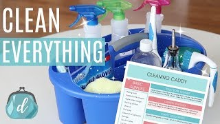 CLEAN YOUR ENTIRE HOUSE WITH DIY CLEANERS! 🍋 Whats In My Cleaning Caddy?