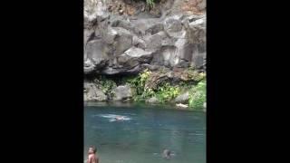 preview picture of video 'Jagger saut de 21m aux cormorans à la Réunion'
