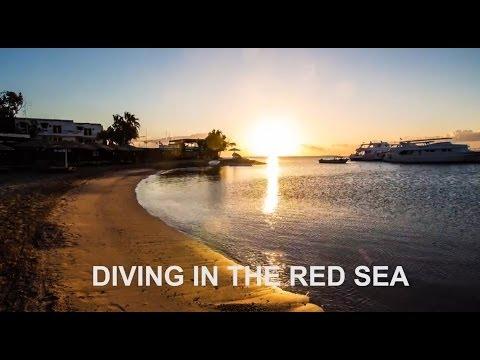 Highlights des Roten Meeres, Rotes Meer allgemein,Ägypten