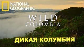 Путешествие: Дикая Колумбия - Serrania de la Macarena / National Geographic