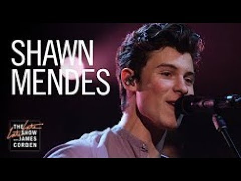 Perfectly Wrong Lyrics – Shawn Mendes