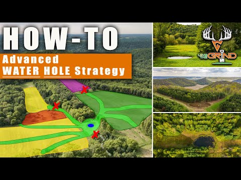 HOW-TO: Advanced WATER HOLE STRATEGY