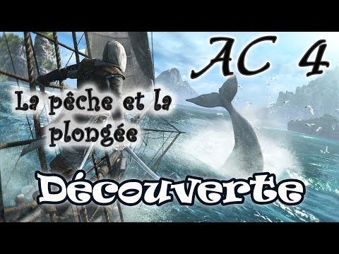 comment trouver baleine blanche assassin's creed 4