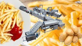 Industrial chips and fries processing machine manufacturer youtube video
