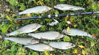 Осенняя рыбалка. Хариус. Часть 2 | Заброшенная изба | Таёжный быт