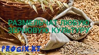 Измельчитель зерна (зернодробилка) «Бизон-1» от компании Группа Интернет-Магазинов GiX - видео