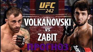 ЗАБИТ БЕЗ ШАНСОВ?! АЛЕКС ВОЛКАНОВСКИ vs ЗАБИТ МАГОМЕДШАРИПОВ НА UFC 242! ЧЬЯ БОРЬБА И УДАРКА КРУЧЕ?